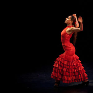 Flamenco Show Madrid