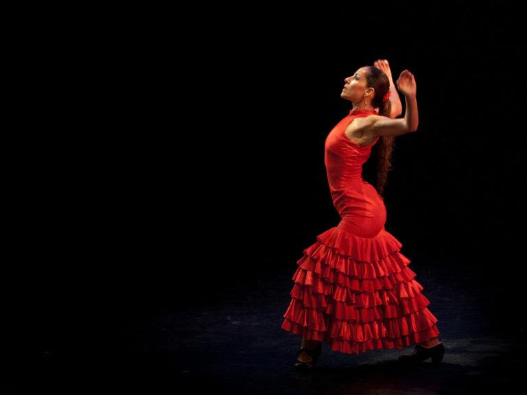 Flamenco Show Madrid