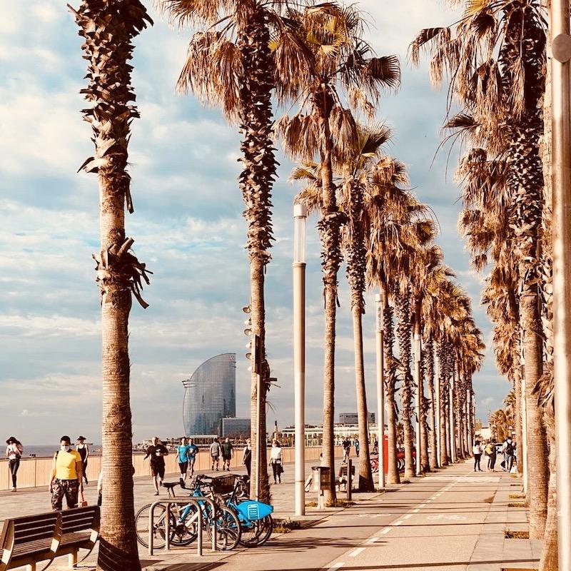 Barcelona-tours-in-english-japanese-korean-chinese